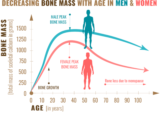 Bone Mass Graph